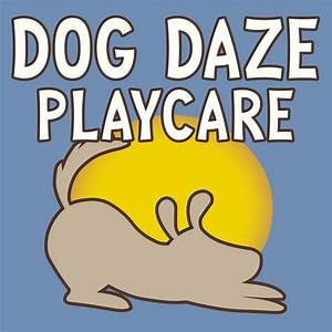 Dog Daze Playcare